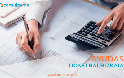 Todas las ayudas para TicketBAI en Bizkaia 💸